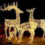 LED deer family